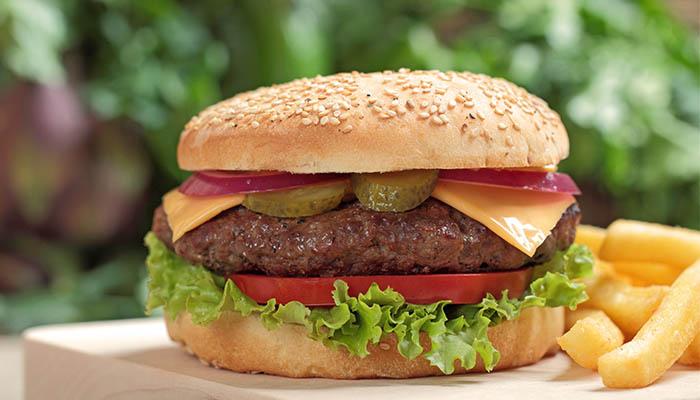 Hamburger Rezilliği :(