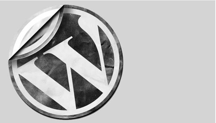 Konulara Okundu Sayacı Ekle | WordPress